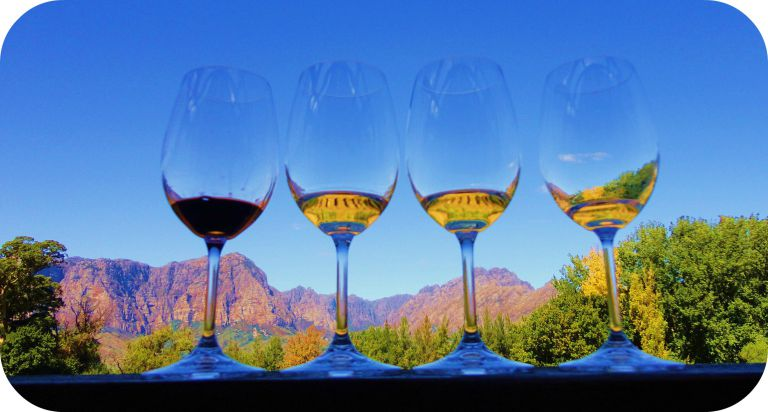 Spend afternoon in vineyards of south africa
